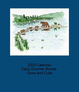 2020 Early Summer Sows and Cubs Desk Calendar Blue