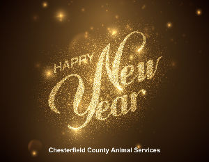 Chesterfield County Animal Services 2020