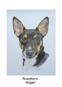 Bogart Rat terrier greeting card