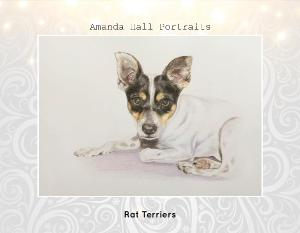 Rat Terrier Portraits 2018