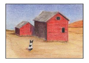 Rat Terrier at the Barns