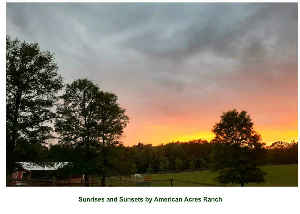 American Acres Sunrises and Sunsets Photo Book