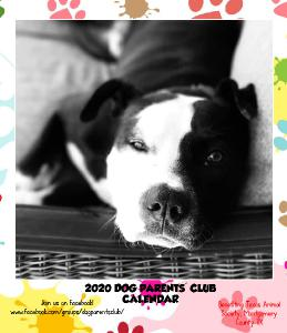 2020 Dog Parents' Club Desk Calendar