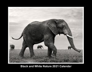 2021 Black and White Calendar by YS Wildlife