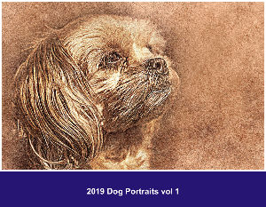 2019 Dog Portrait vol 1
