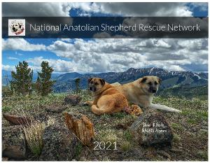 National Anatolian Shepherd Rescue Network NASRN