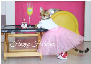 Angel Bengal Holidays Card