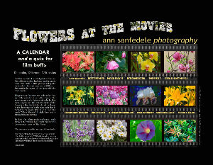 Flowers at the Movies - Wall Calendar and Quiz