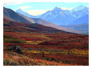 Fall in the Revelation Mountains, Alaska