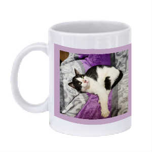 JUDAH & BRIANNA BEE COFFEE MUG