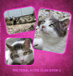 FERAL KITTIE CLAN PHOTO BOOK 2
