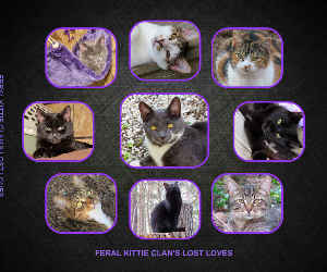 PHOTOBOOK 4 KITTIE CLAN LOST LOVES