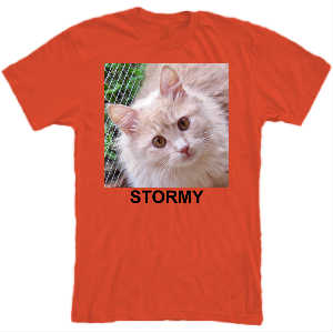 STORMY T-SHIRT