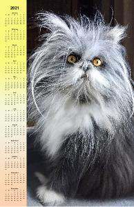 Atchoum The Cat 2021 poster calendar