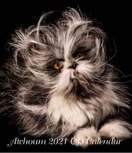 Atchoum The Cat 2021 CD calendar