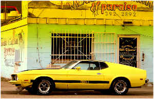 Mustang Mach 1 Poster