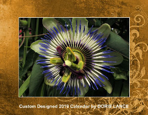 2019 Wildflower Calendar by Doris Lance