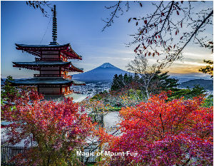 Magic of Mount Fuji