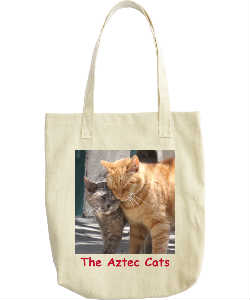 Darcy and Orion Love Tote