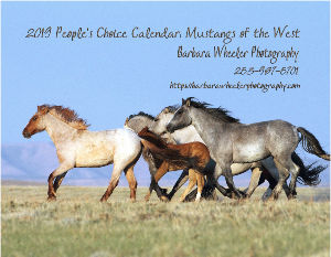2019 People's Choice: Mustangs of the West Calenda