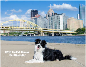 2018 FurKid Rescue Pet Calendar