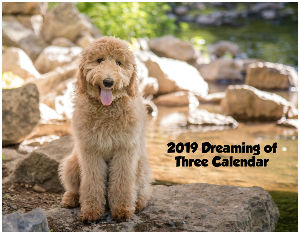 2019 Dreaming of Three Calendar