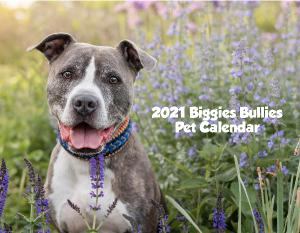 2021 Biggies Bullies Pet Calendar