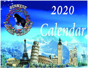 Bernese Friends Worldwide Calendar 2020