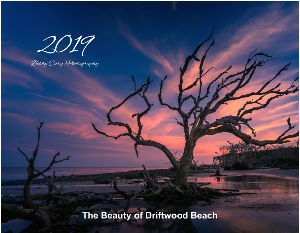 The Beauty of Driftwood Beach