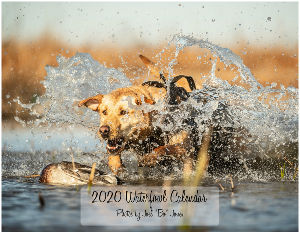 2020 Waterfowl Calendar by Joel