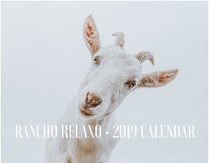 OFFICIAL 2019 RANCHO RELAXO CALENDAR