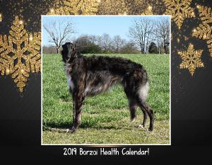 Borzoi Health Fund Calendar