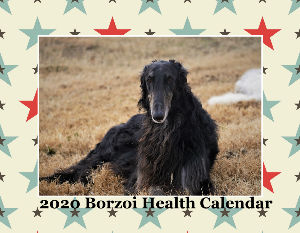 Borzoi Health Fund