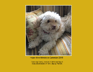 Create Photo Calendars Store