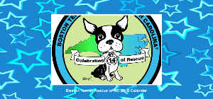 Boston Terrier Rescue of NC 2018 Desk Calendar