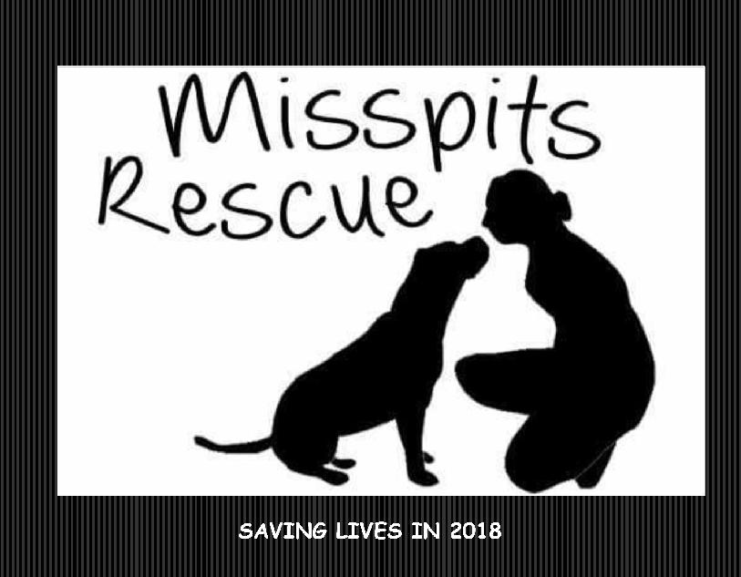 Misspits Rescue 2018