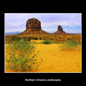 Northern Arizona landscapes