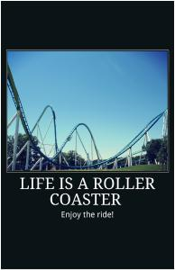 Life is a Roller Coaster - Fury Poster