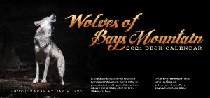 2021 Wolves of Bays Mountain Desk Calendar