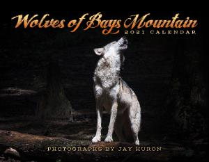 2021 Wolves of Bays Mountain Calendar