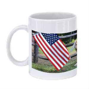 Folly Patriotic Mug 1