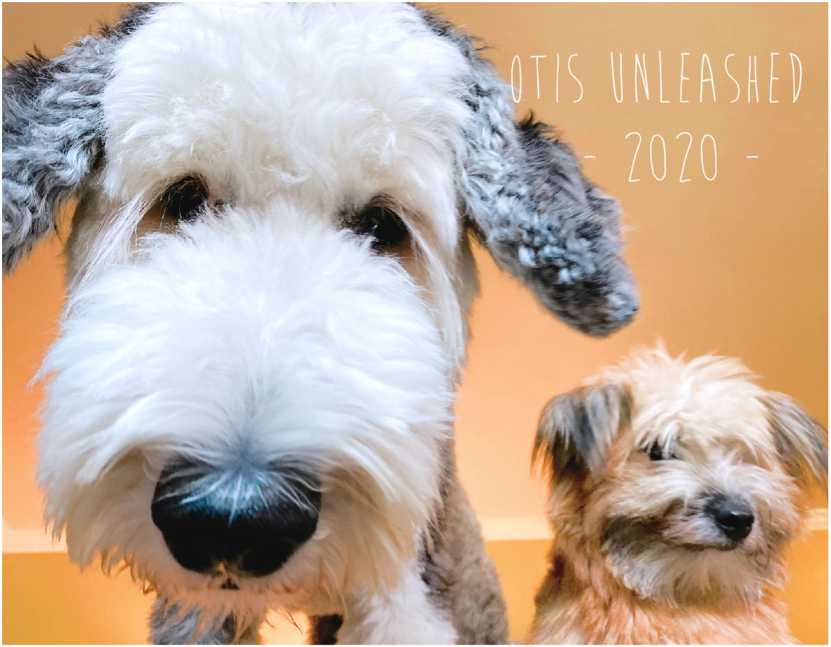2020 otis unleashed calendar