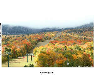 New England Hardcover