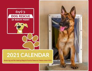 2021 Barb's Dog Rescue of Rocky Point Calendar