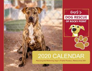 2020 Calendar - Barb's Dog Rescue of Rocky Point