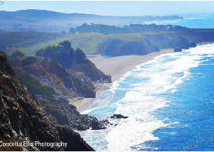 Note Card Ocean Cliff View Scenery Northern Ca