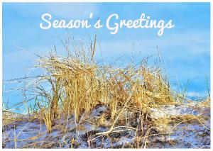 Season's Greetings Beach Card