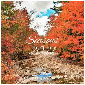 12X12 2021 Seasons Wall Calendar