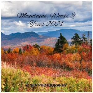 12X12 2021 Mountains & Woods Wall Calendar