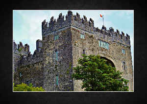 Castle Bunratty 2